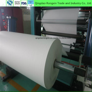 Double Side PE Coated Paper in Sheet Food Grade pictures & photos