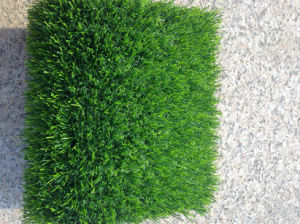 20mm U-Shape Artificial Grass for Spring Gardening pictures & photos