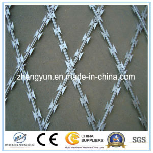 Hot Selling Blade Barbed Wire pictures & photos