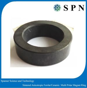 Permanent Ferrite Multipole Magnet Motor Rings pictures & photos