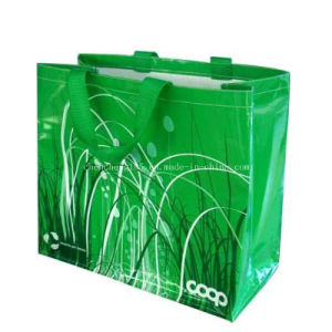 PP Plastic Hand Shopping Bag pictures & photos