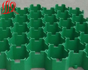 Plastic Grass Paver Grid for Parking Lot / Landscape pictures & photos