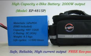 Li-ion Battery/LiFePO4 Battery/High Power Battery for Motorcycles/Tricycles/Bicycles Lithium Battery 48V 15ah with Charger and Free Bag pictures & photos