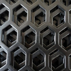 Stainless Steel Perforated Metal for Decorative Mesh pictures & photos