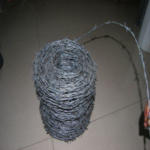 Hot Dipped Galvanized Bwg14*14 Barbed Wire Roll pictures & photos
