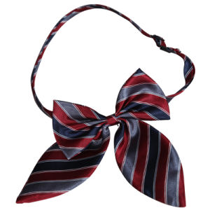 Bow Tie/Cravat pictures & photos