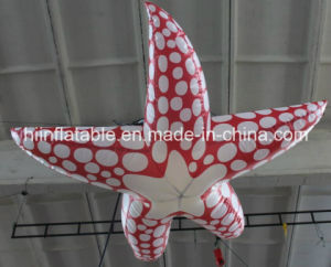 2015 New High Quality Inflatable Sea Star Cartoon pictures & photos