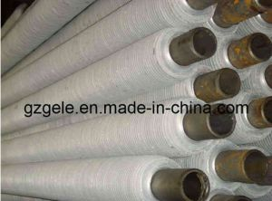 Seamless Stainless Steel Fin Tubes/Steel Pipe