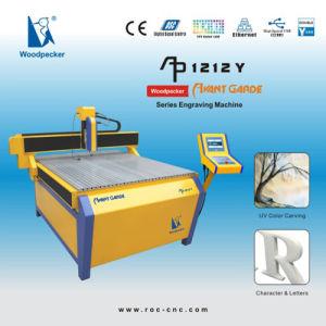 CNC Engraver/CNC Router (Woodpecker AP-1212Y)