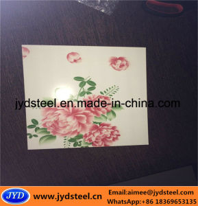 Flower Pattern Color Coated Steel Coil pictures & photos