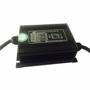 Stable Performance 400W 600W 1000W Dimmable Electronic Digital Ballast Indoor Greenhouse Lighting pictures & photos