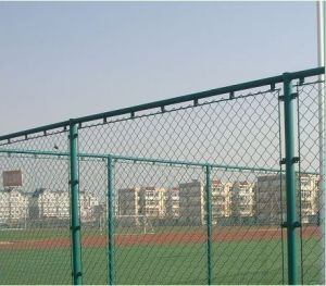 PVC Coated/Galvanized Chain Link Fence Made in China pictures & photos