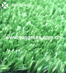 Sports Playground Plastic Grass Carpet (SUNJ-HY00003) pictures & photos