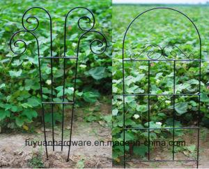 Metal Garden Border Fence pictures & photos