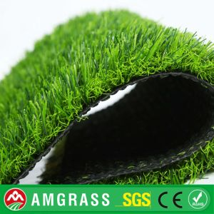 China Synthetic Grass for Outdoor Garden, SGS Certificate