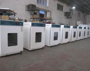 Laboratory Thermostatic Incubator, Constant Temperature Incubator pictures & photos