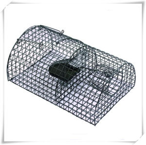 Large Reusable Animal Semicircle Trap Cage for Mice Control (V14023) pictures & photos