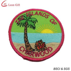 Custom Made Embroidery Patch with Hook & Loop Backing pictures & photos