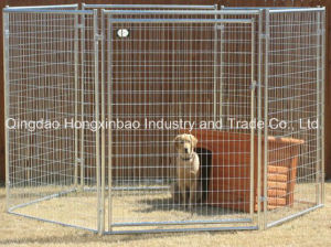 Welded Galvanized Dog Kennel, Wire Mesh Round Tube Dog Cage pictures & photos