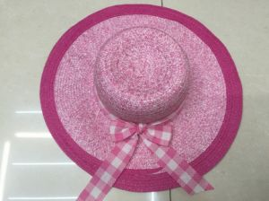 Sun Straw Paper Hot Selling Promotional Topee Glacier Cap Sunbonnet Hat GS122304 pictures & photos