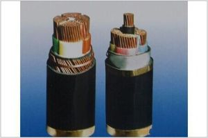 Insulated Power Cable pictures & photos