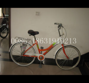 "City Bike 26"" Steel Lady Bicycle (HC-LD-2691) pictures & photos"