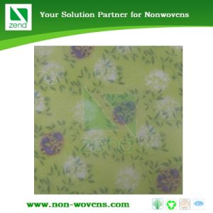 PE Film Laminated Nonwoven Fabric pictures & photos