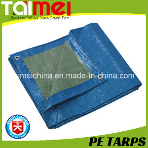 65GSM France Impermeable & Rot-Proof Professional Tarpaulin pictures & photos