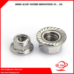 Fastener/Bolt and Nut, Hex/Wing/Flange Nuts Square Nuts, Nylon Lock Nut, Cap Nut, Tainless Steel Nuts pictures & photos