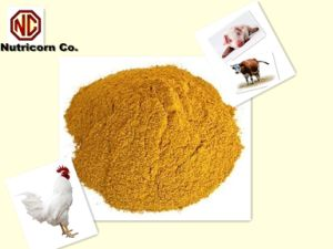 Corn Gluten Meal 60% Protein Feed Grade pictures & photos