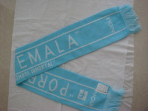 Custom Acrylic Knitted Jacquard Soccer Team Funs Scarf pictures & photos