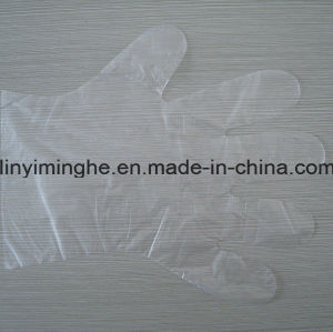 Disposableplastic PE / Folded /HDPE/LDPE Glove pictures & photos