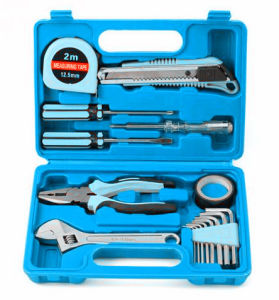 16PCS Household Tool Kit in Blowing Case (FY1016B) pictures & photos