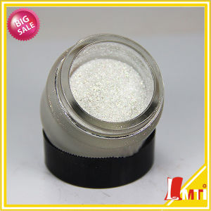 Factory Silver Pearl Pigment Powder Coating Now Lower Price pictures & photos