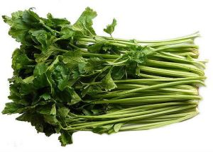 100% Competitive Fresh Celery (750g) pictures & photos