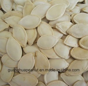 New Crop Shine Skin Pumpkin Seeds pictures & photos