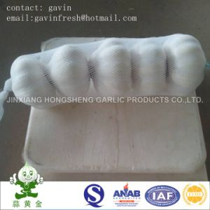 Snow White Garlic /Pure White Garlic 5PCS 200gram Package