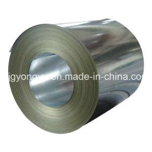Galvanized Steel Coil From Steel Supplier