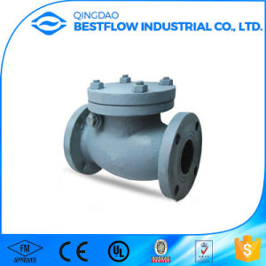 DIN Lift Check Valve / Ductile Iron Swing Check Valve / PVC Swing Check Valve pictures & photos