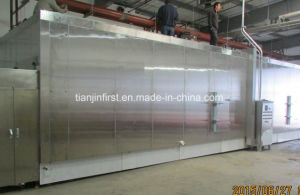 IQF Fluidized Blast Freezer for Fruit and Vegetable pictures & photos