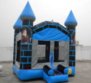 Inflatable Castle, Jumping Castles Inflatable (B1054) pictures & photos