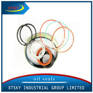 Xtsky Auto Rubber Oil Seal pictures & photos