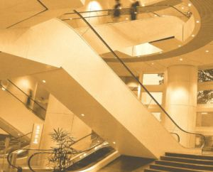 Escalator with 30, 35 Inclination for Shopping Mall