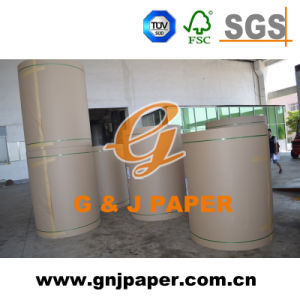 Recycled Kraft Liner Board in Sheet/Roll with Low Price pictures & photos