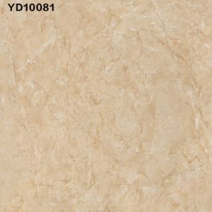 Elegant 40X40′ Marble and Tile in USA (LG10089) pictures & photos