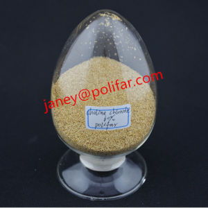 Vitamins-China Choline Chloride Good Quality pictures & photos