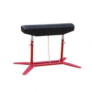 Wholesale Gymnastics Equipment Steel Gymnastics Vaulting Table Horse pictures & photos