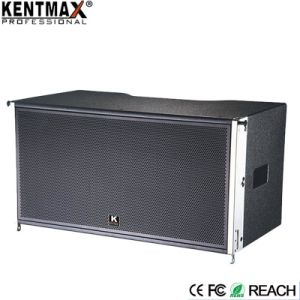 Outdoor Activity Use High Performance Portable Bluetooth Karaoke Speaker pictures & photos