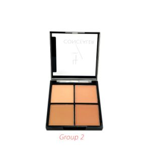 4 Color High Quality Matte Smooth Concealer pictures & photos