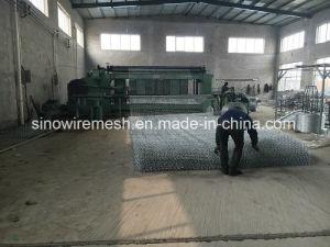 Sailin Gabion Mesh Hexagonal Wire Netting pictures & photos